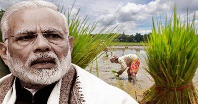 PM मोदी ने किसानों को दिया बड़ा तोहफा, गेहूं, चना जैसी सभी रबी फसलों की MSP बढ़ाई